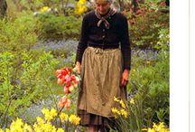 wistful garden