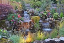 Landscape Design / by All Oregon Landscaping Inc