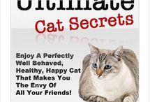 Animal Care & Pets / Home & Garden-Animal Care & Pets