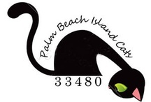 About Us / There are 550 community cats who live and work on Palm Beach Island, FL.  Meet our field team!