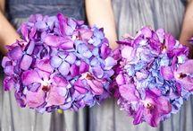 wedding stuff / by Aurora Gipson