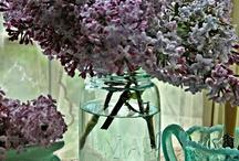 Lavendar & Lilacs