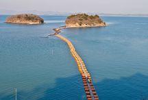 Puentes Flotantes