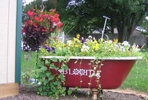 Garden Containers / by Patti Pig Feagans