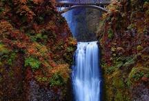 Waterfalls / by Lise Elder
