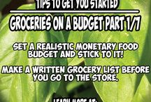 Groceries on a Budget during Cancer Treatment / This is a 7 part series that helps you save money on your grocery budget during cancer treatment. Cancer treatments are extremely costly. It helps to save money in your budget any where you can. Because food is a variable cost and not a fixed expense, this is the best place to find a few extra dollars every month.