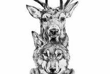 Inspiracje zwierzęce