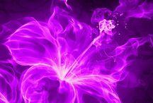 Colours purple