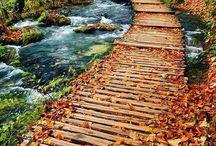 Paysages automne