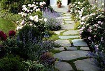 caminho de jardim