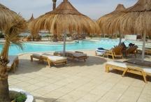 Sharm el Sheikh und die Sinai Halbinsel / Ägyptens Tauchparadiese