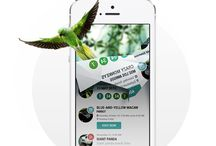 Mobile Design) Layout - Concept