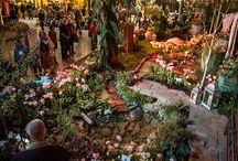 NW Flower & Garden Show / NW Flower and Garden Show - Seattle, WA