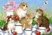 Cards - animals