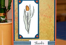 Paper Crafts / Card making, scrapbooking, and other paper crafts. / by Christine Anne