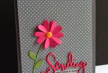 Cardmaking - Female