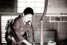 Japanese Tea Ceremoney / All about Japanese tea ceremony.