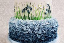 Tisa and Bridget / Birthday cake ideas