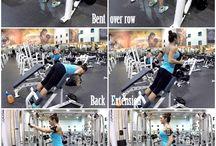 8napos edzés