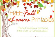 Seasonal Freebies and Printables / Find printables and ideas for Winter, Spring, Summer and Fall