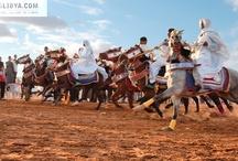 Libyan festivals / www.tourslibya.com