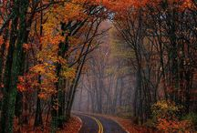 Old country roads / Old road in the country