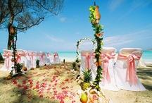 Wedding Bliss / by Alethea Nichols