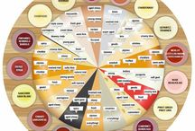 Food for beginners. Inforgraphics / by Melissa Wentzel