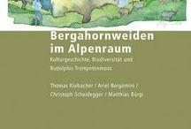 Natur Neuerscheinungen / Die neusten Bücher im Bereich Natur: Garten, Bestimmungsführer, Naturgeschichte, Tier- und Pflanzenwelt, Umwelt und Ökologie.