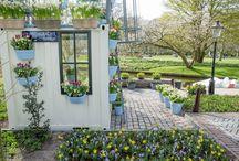 Bakker's Amsterdamse Tuin @ Keukenhof / Elk jaar levert Bakker 200.000 bloembollen aan Keukenhof. In 2015 hebben we in het kader van ons 70-jarig bestaan een bijzondere inzending: de Amsterdamse Tuin! Hier is volop inspiratie te vinden voor de kleine tuin en de moestuin.