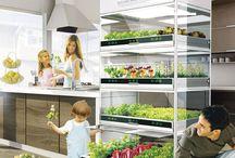 Food/green Design / Grow, aquaponics, natural fridge
