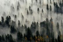 Nature/places