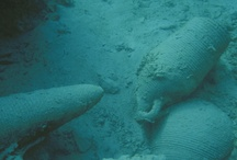Underwater Archaeology / What a shipwreck usually looks like...