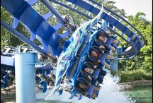 Best theme park rides and attractions