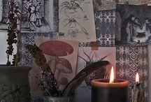 treasure box: January 25, 2014 / by Kathleen Clay