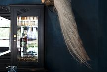 taxidermy / by Payton Berry