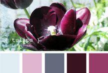 barvy / mnoda, kombinace barev