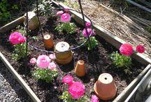 Mon Jardin Romantique..