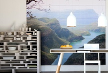 dream home inspiration and design / by Adia Olguin