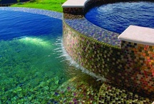 Pool / by Clara Varjavandi