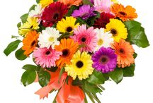 Anniversary Flowers / Anniversary is a day which comes ones in a year to cherish your memories and makes you remember that there are many more days which are yet to come of belongingness. For More Details : http://www.floweraura.com/sendflowers/occasion/anniversary-flowers