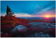 Oh Those West Virginia Hills / by Sheila Wilcox