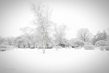 Winter Wedding Inspiration / Cantigny Park is the perfect wedding venue any time of year, but when the grounds are blanketed in the purest snow, Cantigny is transformed into a magical winter wonderland. Here are some great winter wedding ideas from across Pinterest and some of our own.