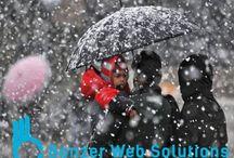 Web Development Company Shimla India