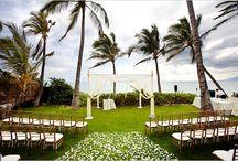 A Chinese Hawaiian Wedding / by Jenn Cook