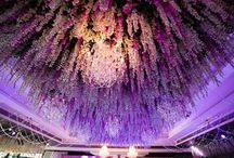 Wedding Hall Ceiling