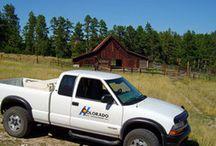 Best Pest Control in Colorado