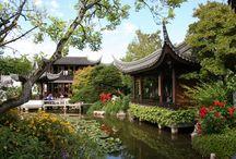 Garden / Chinese & Japanese