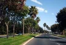 Parkways / A parkway is a broad, landscaped highway thoroughfare. The term is particularly used for a roadway in a park or connecting to a park. Parks and greenways can mitigate air pollution and increased temperatures. Mature tree canopies can reduce air temperature five to ten degrees, helping to counteract the urban heat effect.