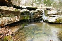 In The Shawnee / We are so lucky to be in the beautiful Shawnee National Forest. It's gorgeous and we love to explore it!